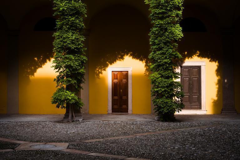Žltý rodinný dom s dvoma dverami a ihličnatými stromami.jpg